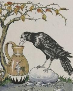 crowpitcher